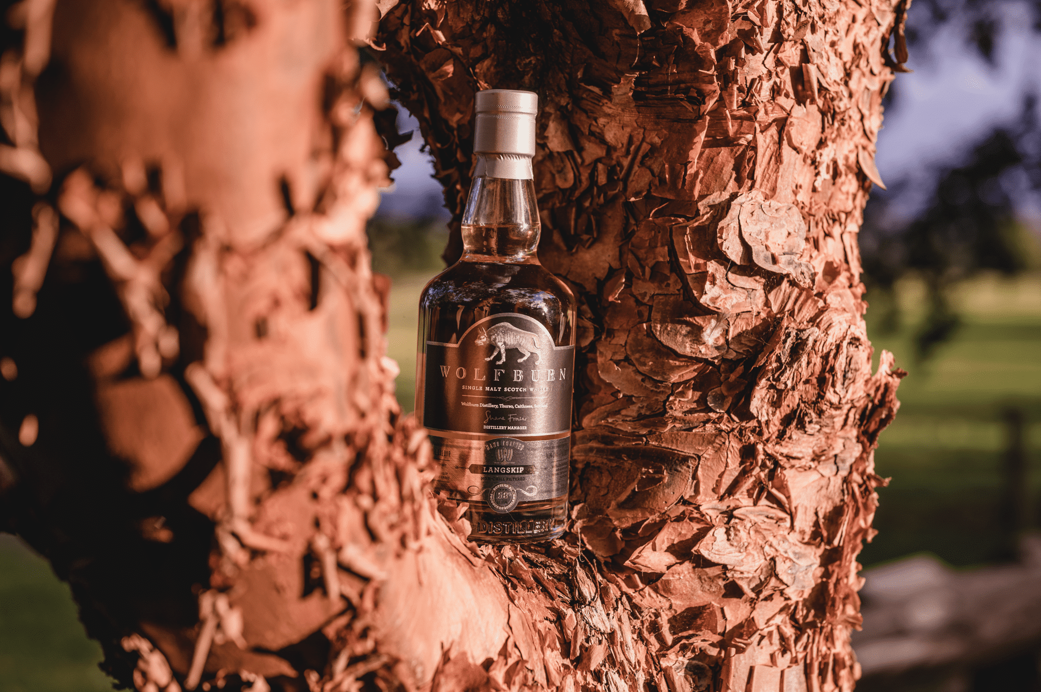 August 2020 – Wolfburn Langskip, Summerton Whisky Club - Excellence in Whisky