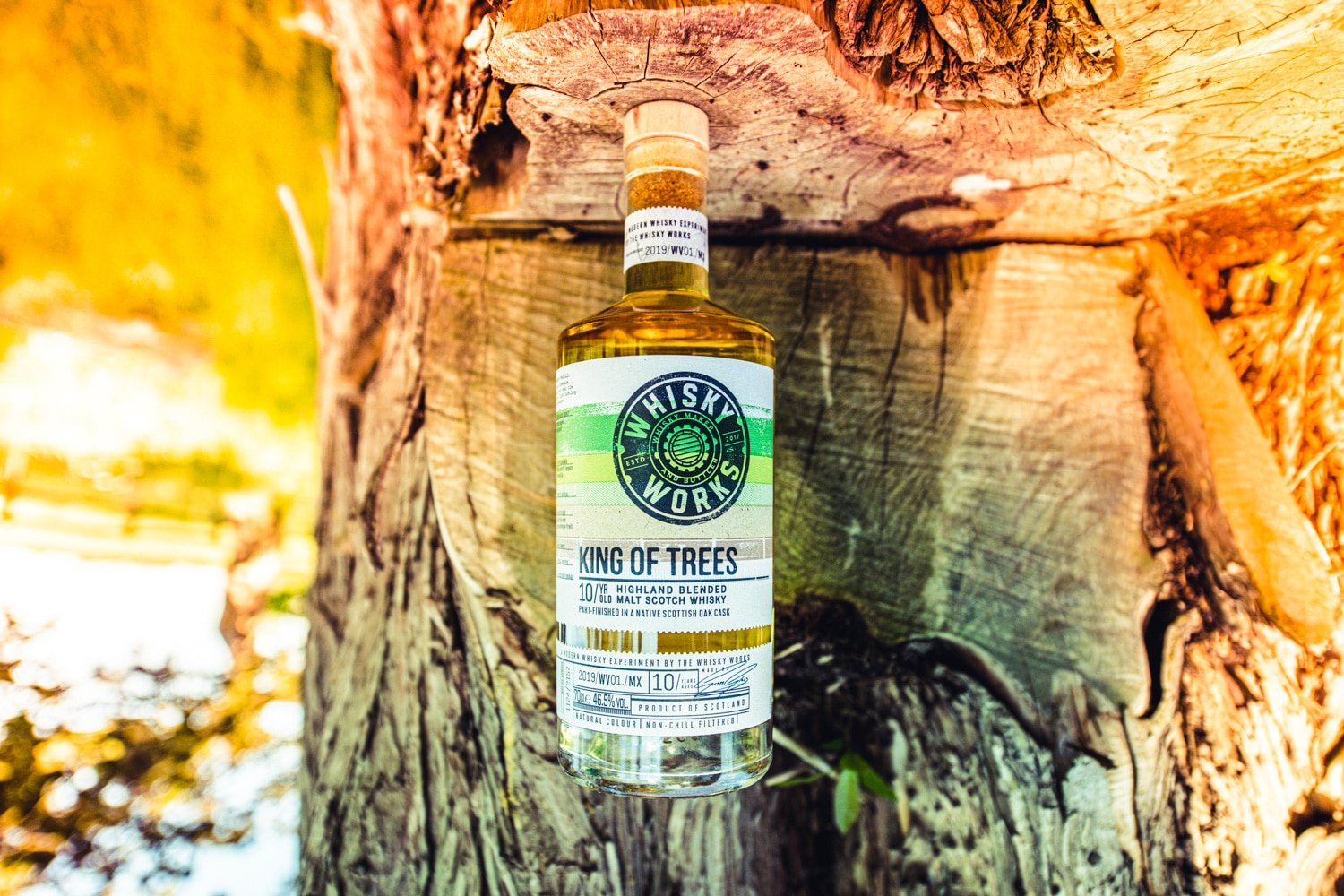 August 2021 – Whisky Works King of Trees 10Yr, Summerton Whisky Club